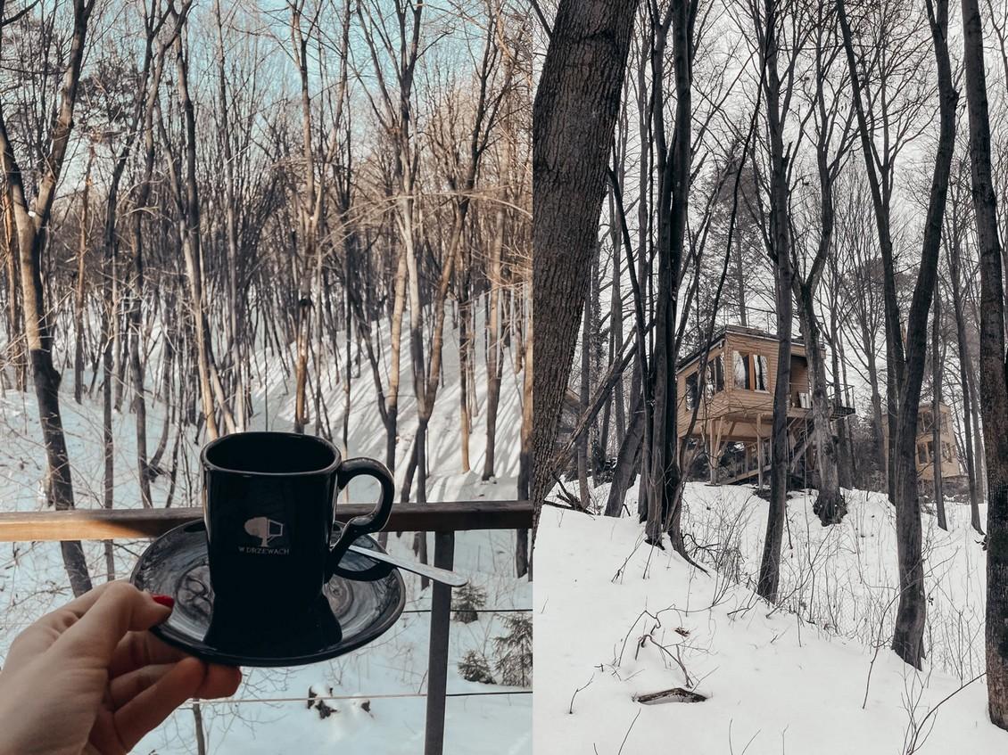 kawa w drzewach_do posta