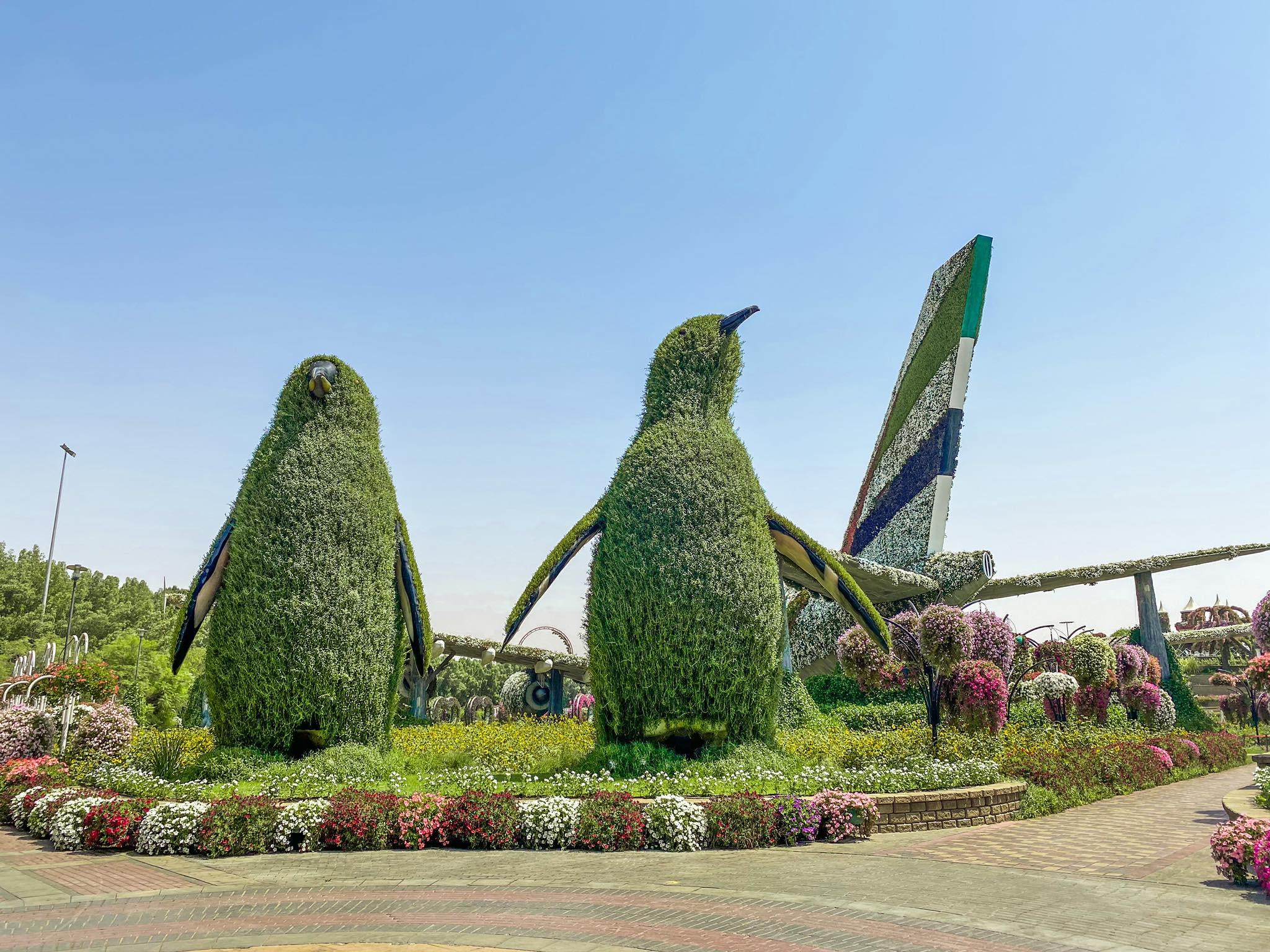 Dubai Miracle Garden_4