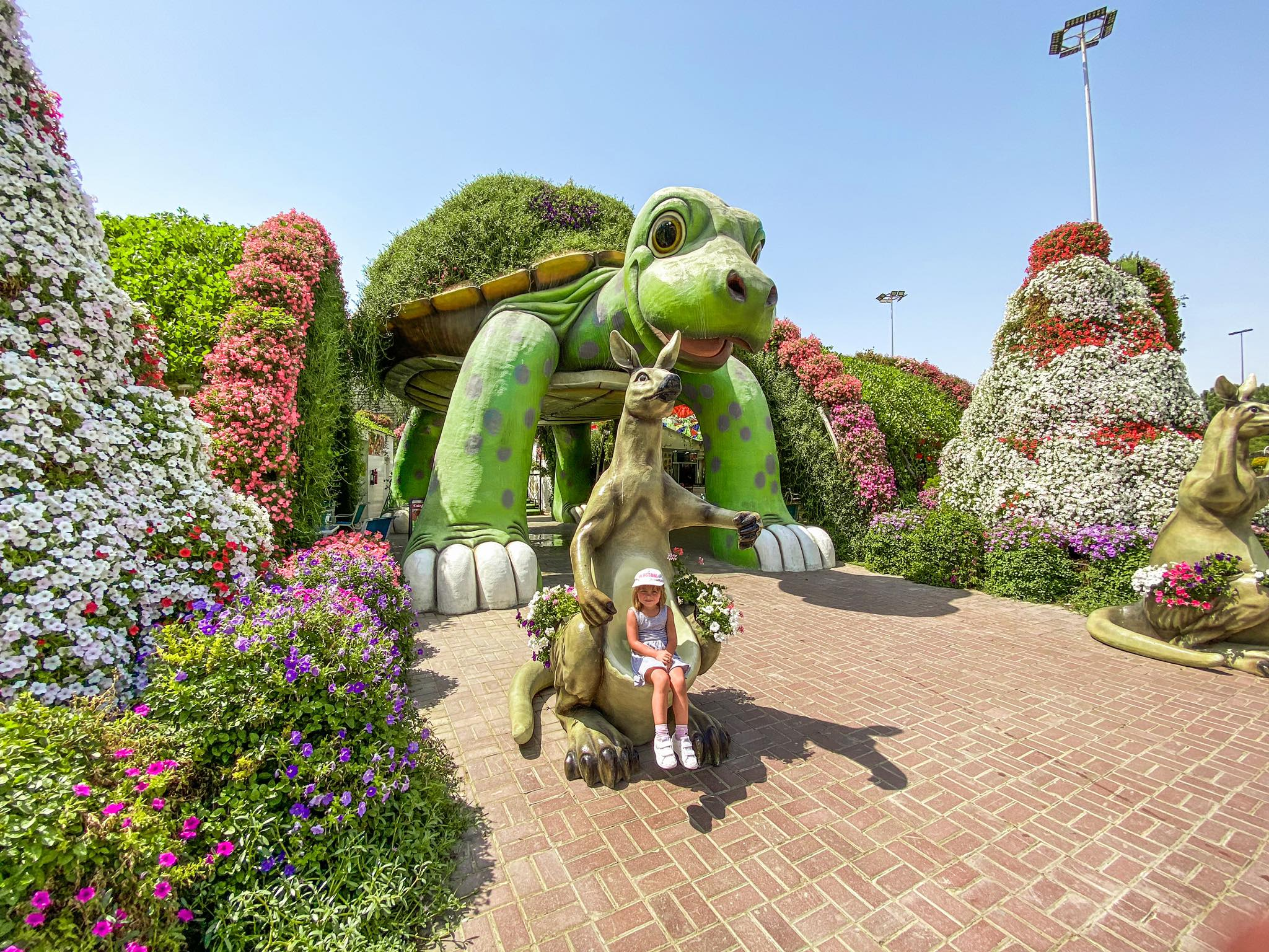 Dubai Miracle Garden_6