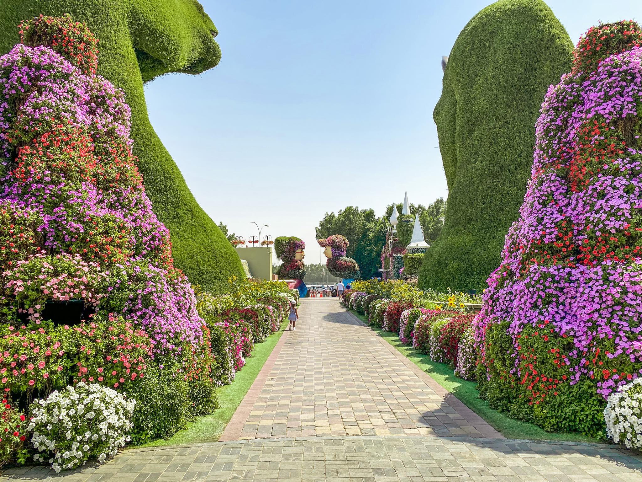 Dubai Miracle Garden_9