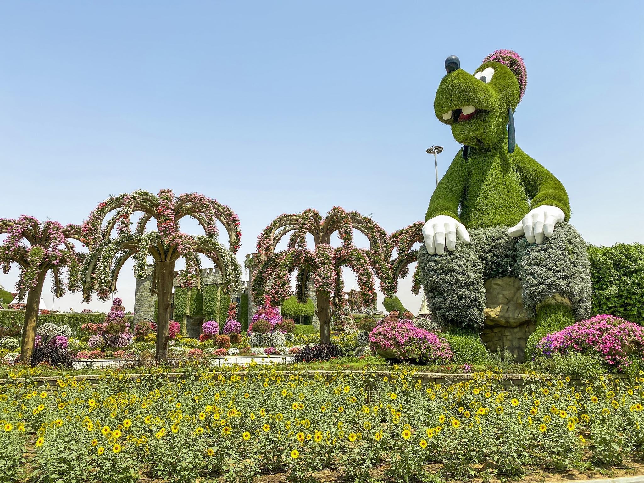 Dubai Miracle Garden_Goofy
