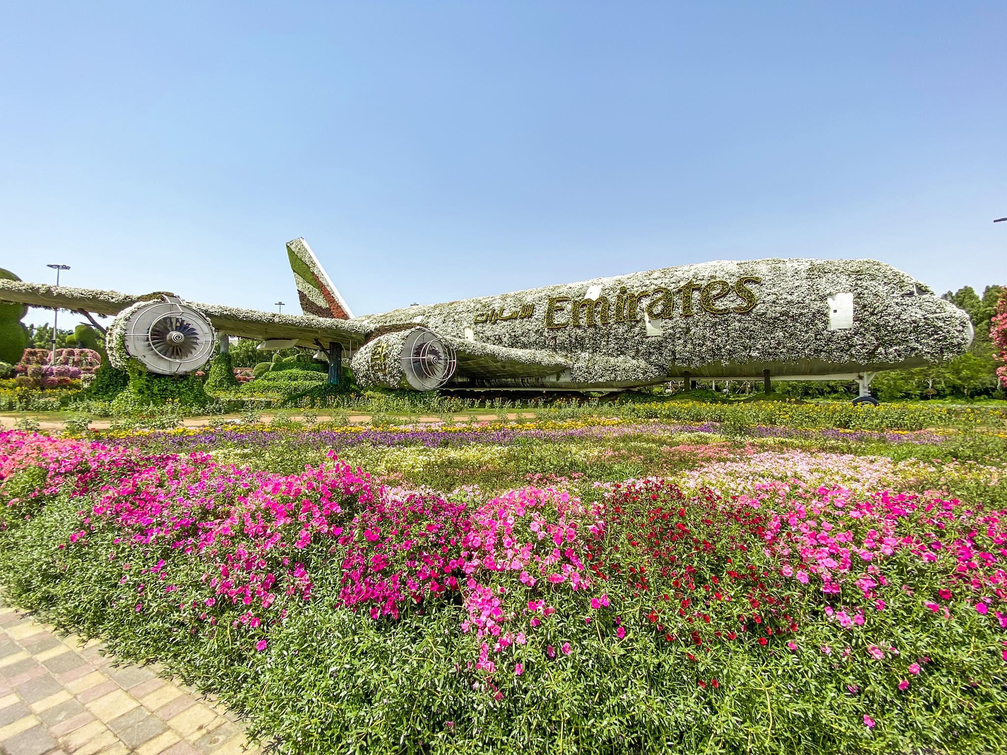 Dubai Miracle Garden_samolot Emirates
