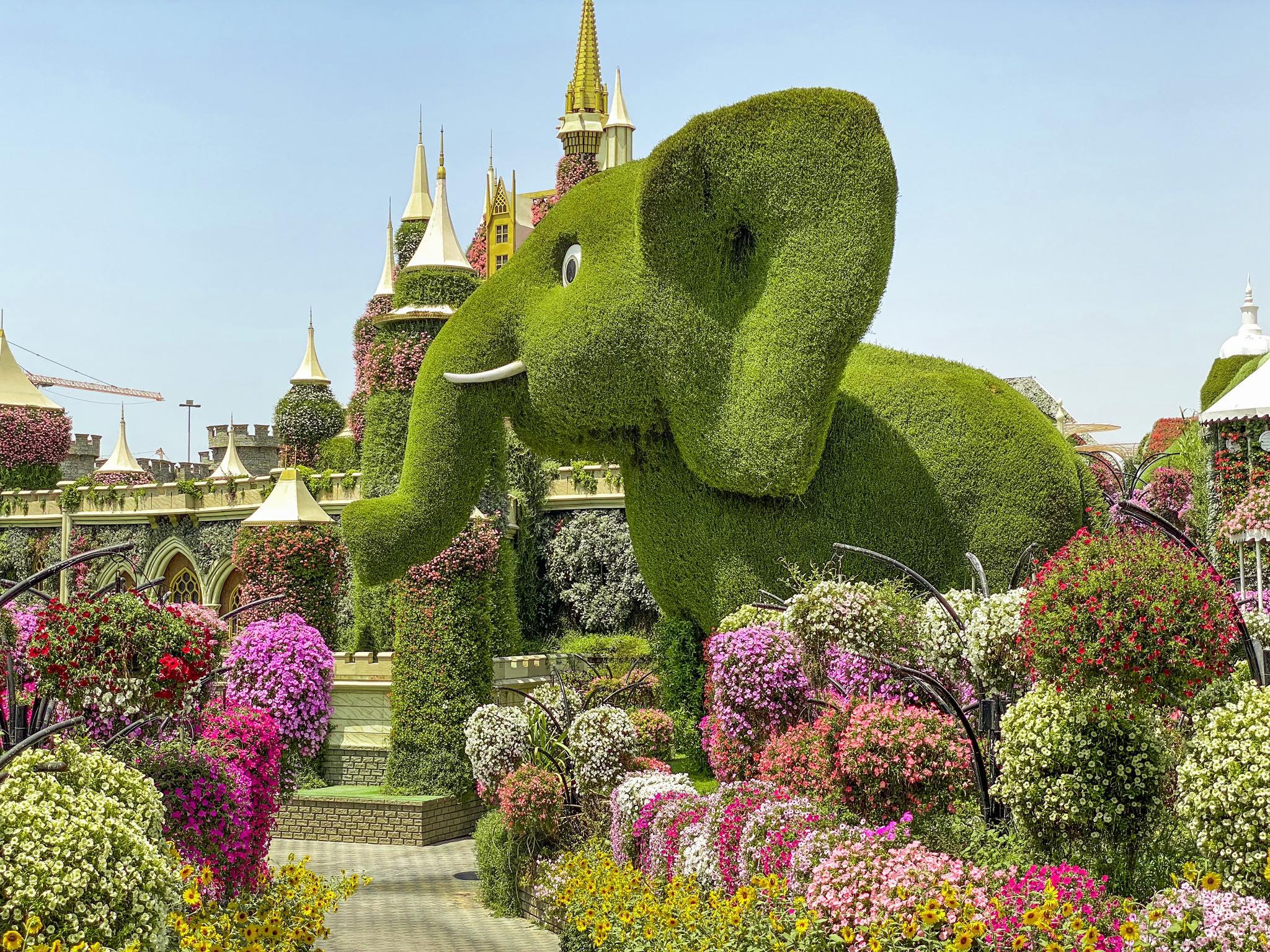 Dubai Miracle Garden_słon