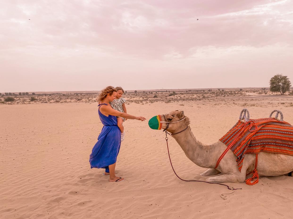 Bab al Shams_wielbłądy