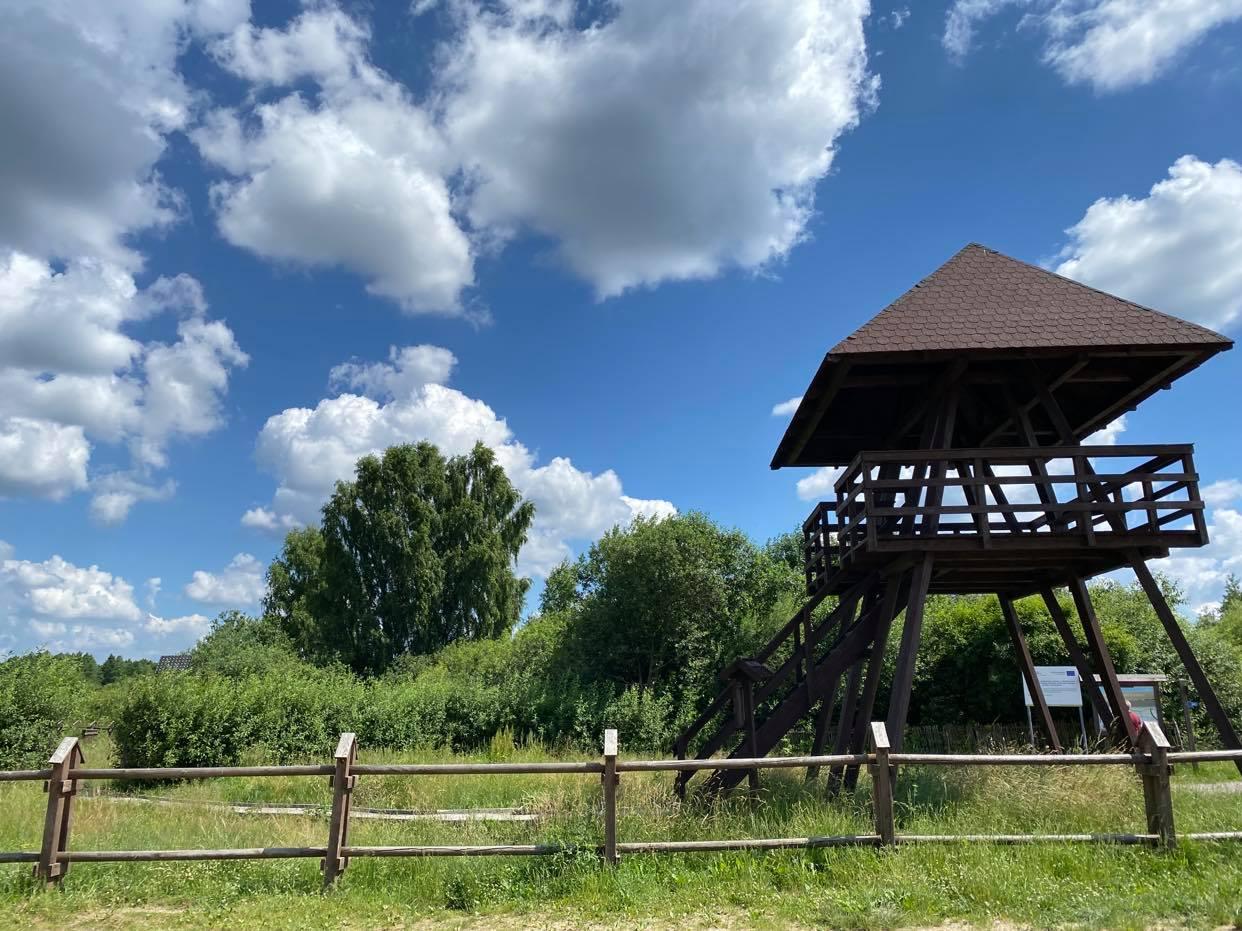 Wieża Widokowa PPN_Zastawie