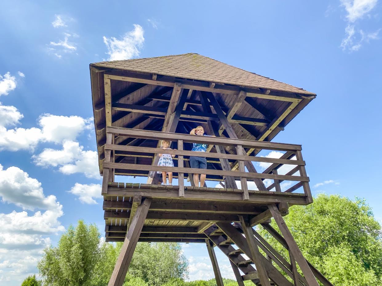wieża widokowa PPN